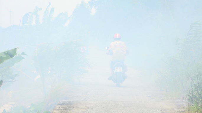 """""""Ớn lạnh"""" việc đốt đồng ở miền Tây tiềm ẩn tai nạn giao thông - Ảnh 6."""