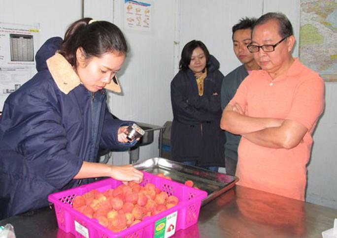 Áp lực từ cuộc chiến thương mại Mỹ - Trung (*): Nông sản Việt sẽ ra sao? - Ảnh 1.