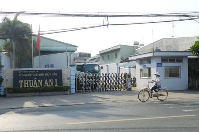 Vụ chuỗi nuôi cá tra ở An Giang đổ vỡ: Phải kiện ra tòa! - Ảnh 1.