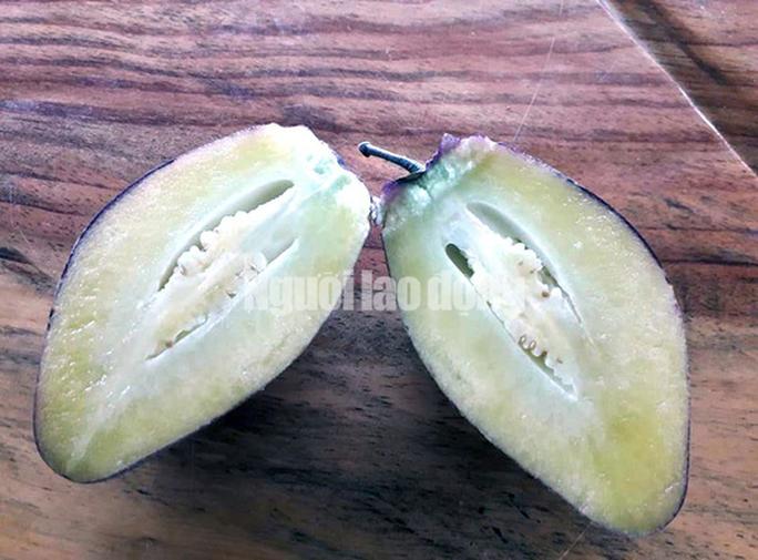 Kỹ sư trẻ trồng thành công dưa pepino tím độc nhất Việt Nam - Ảnh 2.