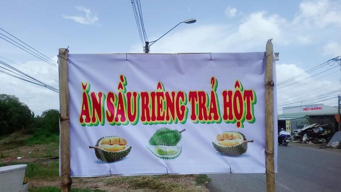 Lại ùn ùn kéo về Vĩnh Long ăn sầu riêng 19.000 đồng/kg - Ảnh 3.