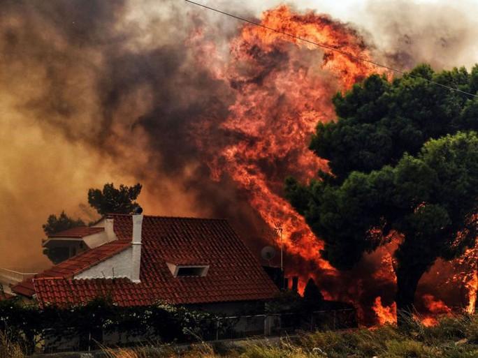 Cháy rừng Hy Lạp: Hàng chục người vượt không nổi biển lửa, chết gục trong sân nhà - Ảnh 2.