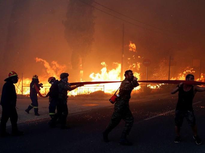 Cháy rừng Hy Lạp: Hàng chục người vượt không nổi biển lửa, chết gục trong sân nhà - Ảnh 6.