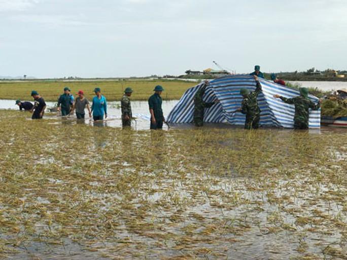 Nông dân thiệt hại nặng vì mưa dầm - Ảnh 1.