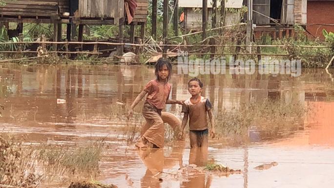 THẢM HOẠ VỠ ĐẬP THUỶ ĐIỆN: Động vật chết khắp nơi, trẻ em lội bùn nhận cứu trợ - Ảnh 3.