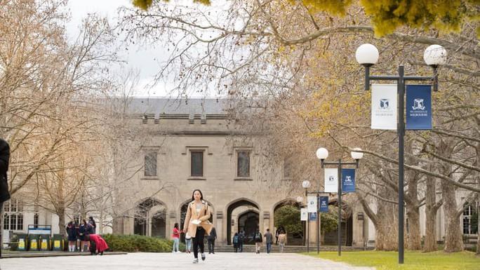 Hàng chục sinh viên bị đuổi học vì nộp giấy chứng nhận y tế giả - Ảnh 1.