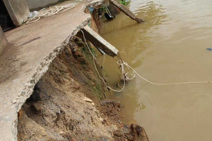 Chưa hết hạn bảo hành, kè tiền tỉ trôi xuống sông Đồng Nai - Ảnh 5.