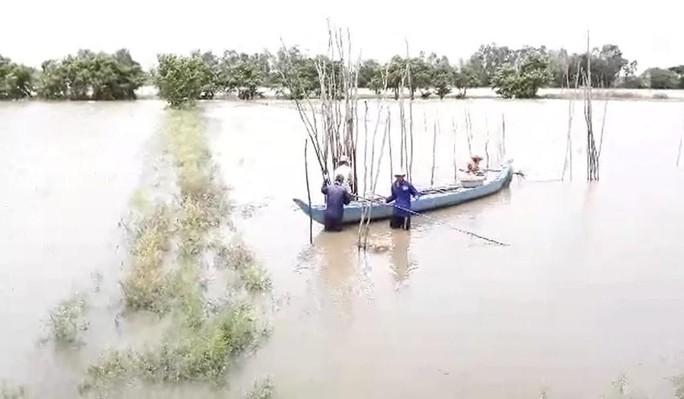 Miền Tây bắt đầu chống chọi với nước lũ từ sự cố vỡ đập ở Lào - Ảnh 2.