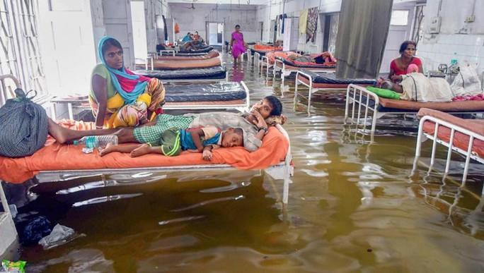 Ấn Độ: Mưa lớn gây ngập nặng, cá bơi vào bệnh viện - Ảnh 1.