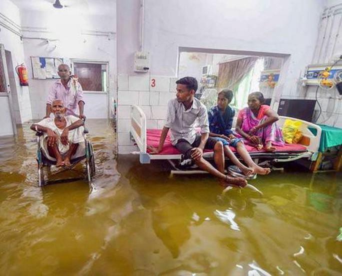 Ấn Độ: Mưa lớn gây ngập nặng, cá bơi vào bệnh viện - Ảnh 4.