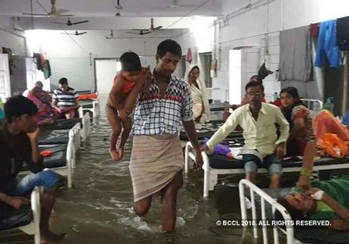 Ấn Độ: Mưa lớn gây ngập nặng, cá bơi vào bệnh viện - Ảnh 5.