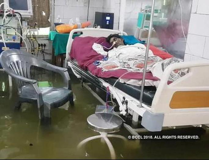 Ấn Độ: Mưa lớn gây ngập nặng, cá bơi vào bệnh viện - Ảnh 6.
