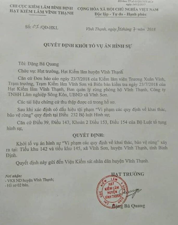 Khởi tố vụ phá rừng cổ thụ ở Bình Định - Ảnh 1.