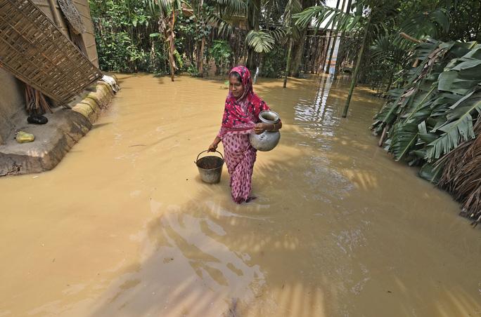 Ấn Độ: Mưa lớn gây ngập nặng, cá bơi vào bệnh viện - Ảnh 8.