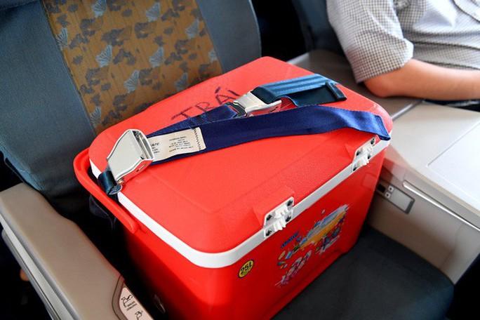 Tạng hiến cứu người ngồi hạng thương gia trên máy bay - Ảnh 1.