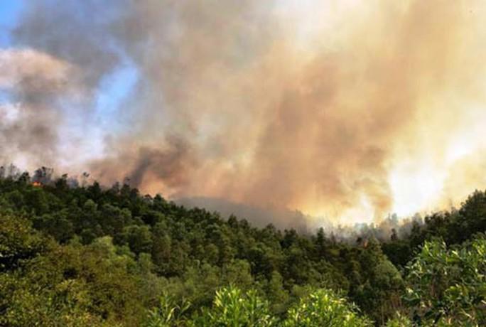 Bà hỏa thiêu rụi 10 ha rừng tại Thanh Hóa - Ảnh 1.