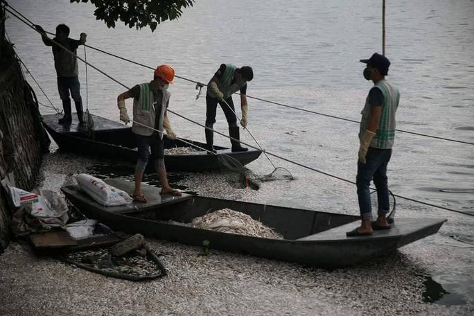 Cá chết ở hồ Tây: Có thể do biến đổi khí hậu - Ảnh 3.