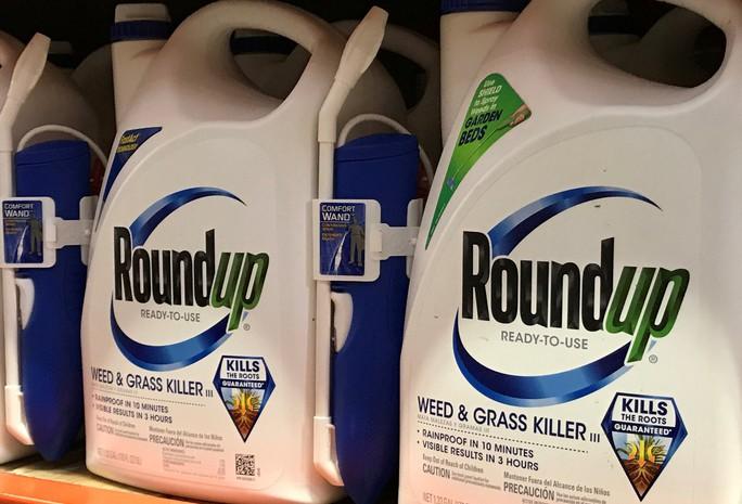 Monsanto trúng đòn mạnh - Ảnh 2.