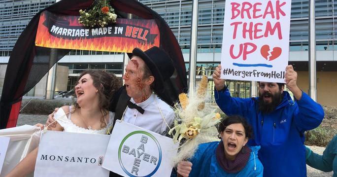 Tai tiếng Monsanto: Cuộc hôn nhân tai hại - Ảnh 1.