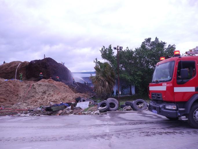 Bình Định: Hàng trăm người tham gia dập tắt đám cháy ở kho dăm gỗ - Ảnh 2.