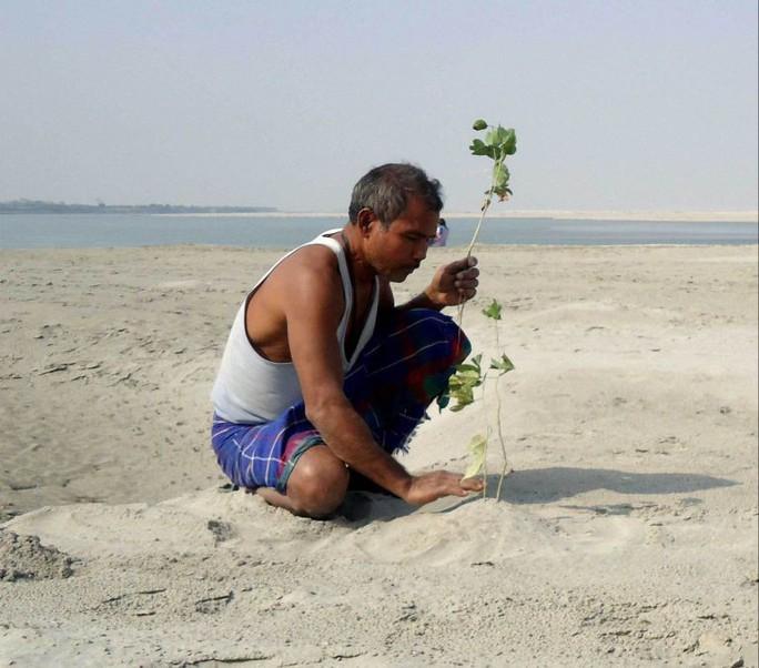Người đàn ông một mình trồng rừng rộng 550 hectare trong 40 năm - Ảnh 1.
