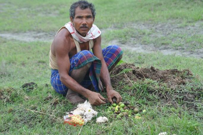 Người đàn ông một mình trồng rừng rộng 550 hectare trong 40 năm - Ảnh 3.