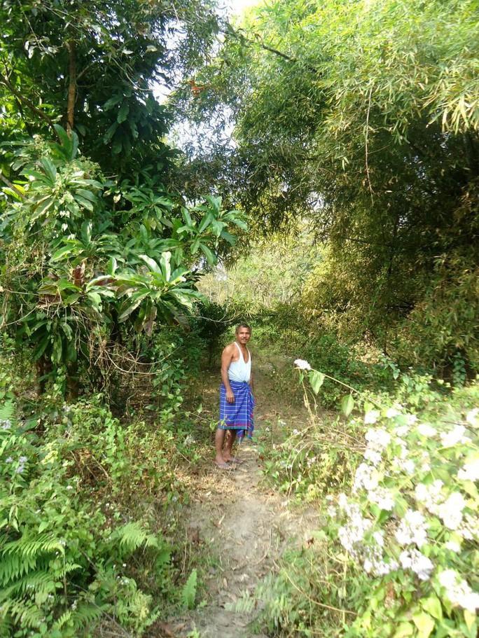 Người đàn ông một mình trồng rừng rộng 550 hectare trong 40 năm - Ảnh 4.