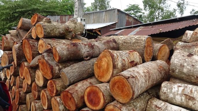 Vào làng nghề làm thớt gỗ trứ danh ở miền Tây - Ảnh 2.