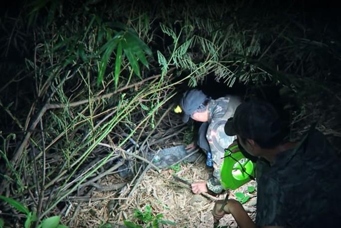 Lạnh người  với cảnh săn rắn giữa đêm nước nổi - Ảnh 1.