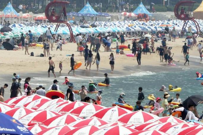 Triều Tiên cảnh báo về nắng nóng chưa từng có - Ảnh 2.