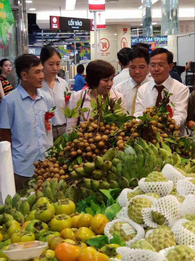 Trái cây miền Bắc dồn dập vào siêu thị - Ảnh 1.
