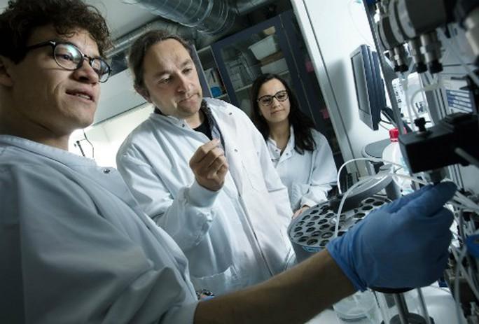 Phát hiện sớm nhiều bệnh ung thư nhờ… protein sốt rét - Ảnh 1.