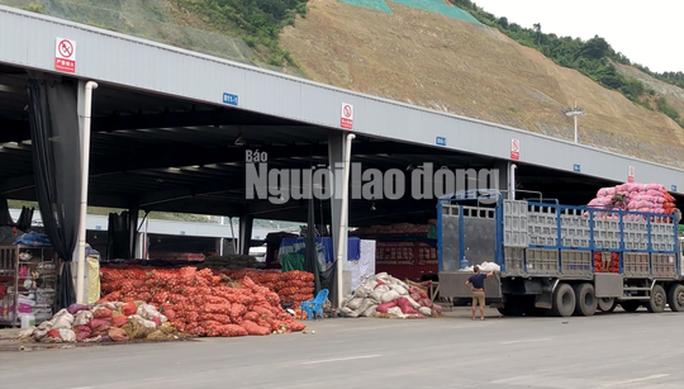 VIDEO điều tra: Đường đi nông sản Trung Quốc nhái Đà Lạt - Ảnh 3.