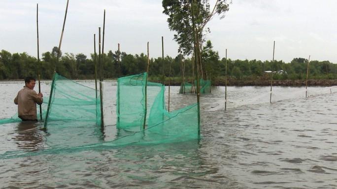 Khai thác nguồn lợi thủy sản mùa nước nổi mang tính tận diệt - Ảnh 2.