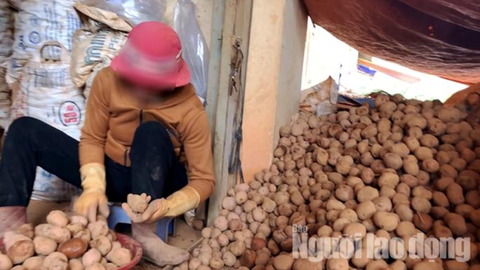 VIDEO: Vạch mặt chiêu trò phù phép nông sản Trung Quốc nhái Đà Lạt - Ảnh 2.