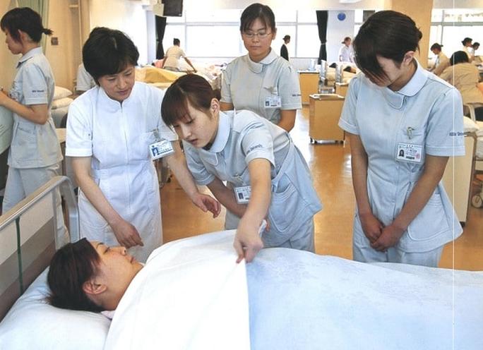 Thêm 7 doanh nghiệp được đưa hộ lý sang Nhật làm việc - Ảnh 2.