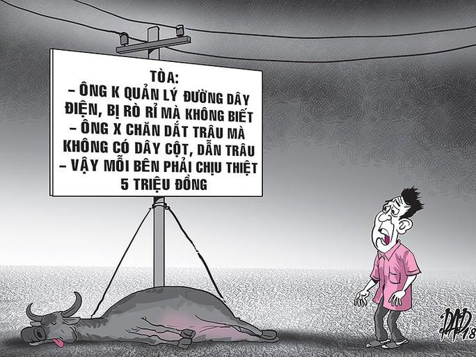Vụ án con trâu cái ở Tây Ninh - Ảnh 1.