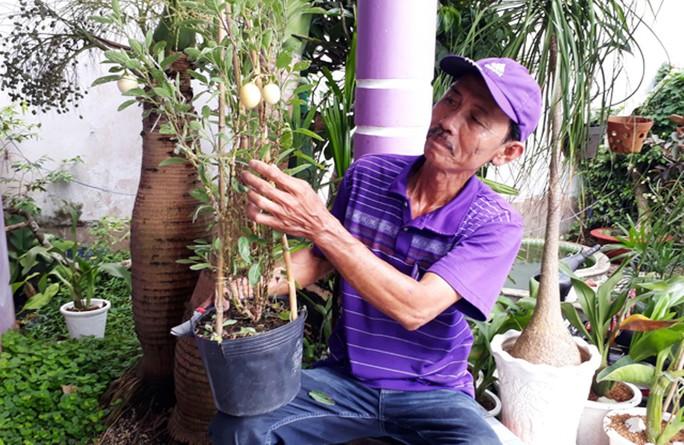 Nông dân Sa Đéc thuần hóa nhiều giống cây kiểng độc, lạ - Ảnh 4.