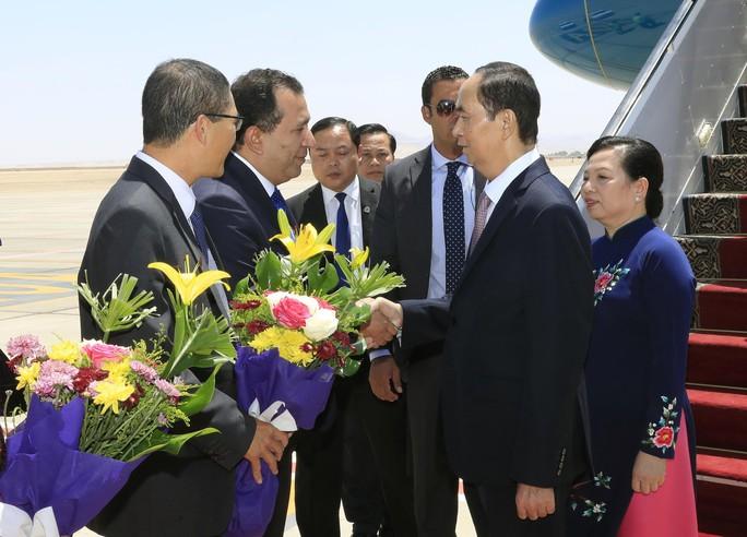 Việt Nam - Ai Cập hợp tác đa lĩnh vực - Ảnh 1.