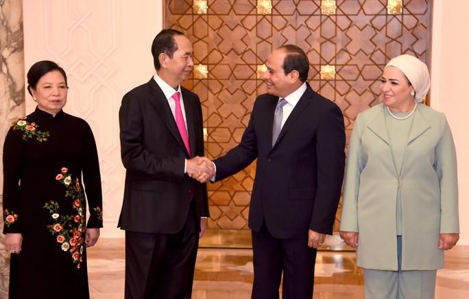 Việt Nam - Ai Cập thúc đẩy hợp tác kinh tế - Ảnh 1.