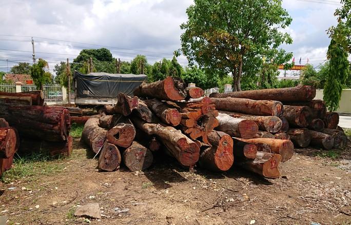 Khởi tố hạt trưởng kiểm lâm tiếp tay cho trùm gỗ lậu Phượng râu - Ảnh 2.