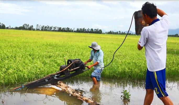Hàng chục ngàn ha lúa vùng Tứ giác Long Xuyên bị nước lũ uy hiếp - Ảnh 6.