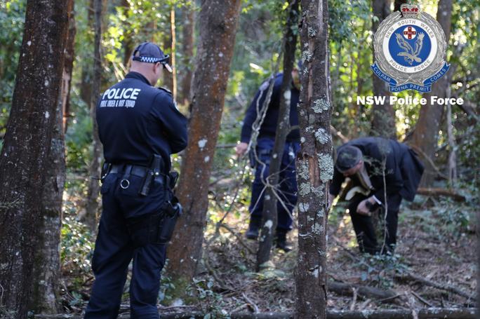 Tìm thấy hài cốt của doanh nhân gốc Việt trong rừng rậm ở Úc - Ảnh 2.