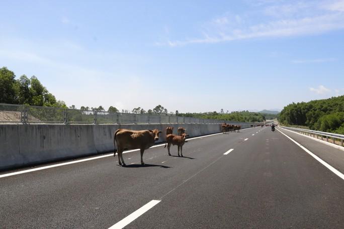 Cận cảnh cao tốc 34.500 tỉ đồng ô tô đi lộc cộc, lộc cộc - Ảnh 15.