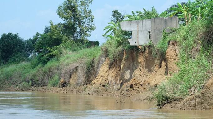 Nhói lòng trước vùng sạt lở dọc sông Đồng Nai - Ảnh 12.