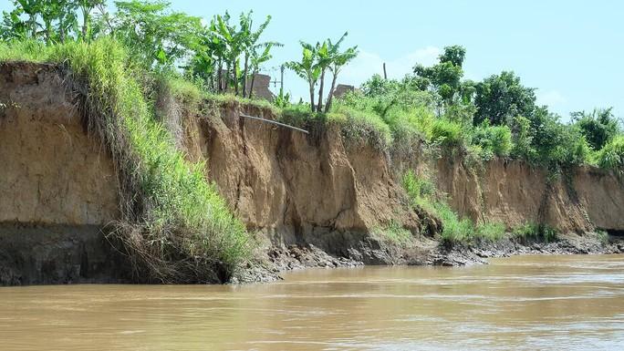 Nhói lòng trước vùng sạt lở dọc sông Đồng Nai - Ảnh 6.