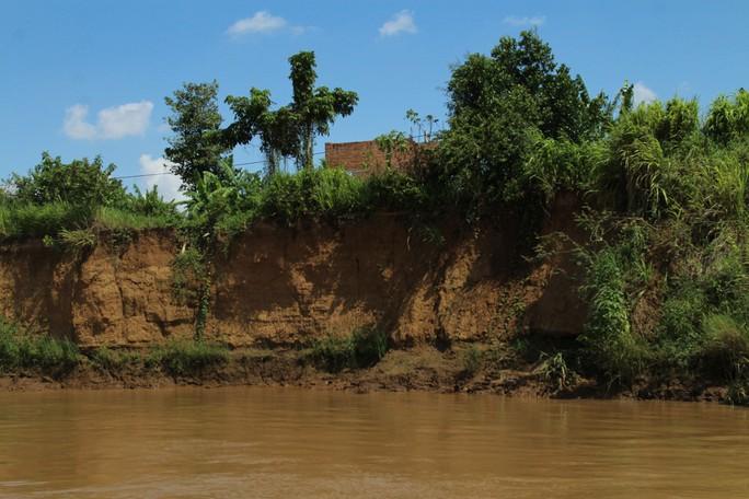 Nhói lòng trước vùng sạt lở dọc sông Đồng Nai - Ảnh 8.