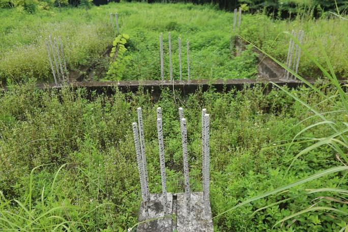 Cận cảnh dự án biệt thự 2.000 tỉ đồng bỏ hoang của Lã Vọng - Ảnh 9.
