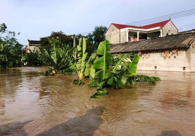 Thanh Hóa, Nghệ An ngổn ngang do mưa lũ - Ảnh 1.