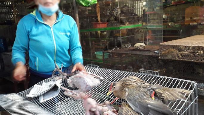 Cận cảnh tàn sát chim trời ở chợ chim lớn nhất Miền Tây - Ảnh 8.